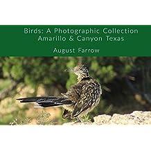 Birds: A Photographic Collection: Amarillo & Canyon Texas (English Edition)