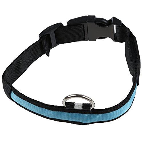 TOOGOO(R) LED-Blitzlicht einstellbare Sicherheits Haustier Hund leichtes Nylon-Halsband Plain Tag - Blau S