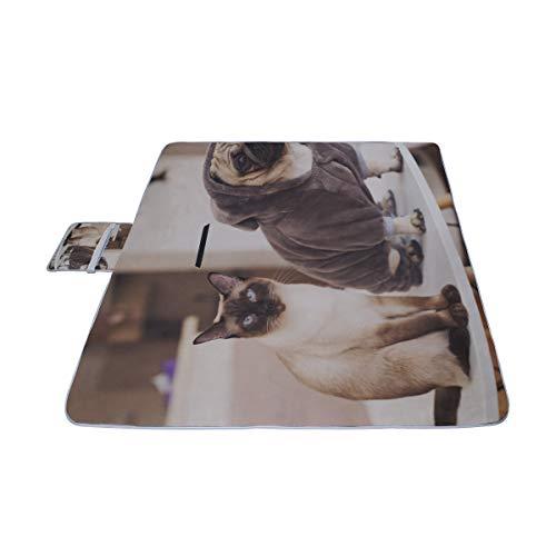 AGIRL Mops und süße Katze sitzen zusammen Picknickmatte 57 '' x 79 '' (140cmx200cm) Picknickdecke Strandmatte mit wasserdichter für Kinderpicknickstrände und gefaltete Tasche im (Mops Katze Kostüm)