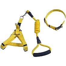 Arnés para correa de perro, durable seguro ajustable correa de perro de nylon fuerte y collar conjunto Plomo con cómoda mango de espuma ideal para caminar escalada entrenamiento