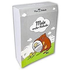 Idea Regalo - Il mio primo Calendario per primo anno, regalo per nascita, libro per neonati, 365 consigli e consigli (lingua italiana non garantita), formato A6