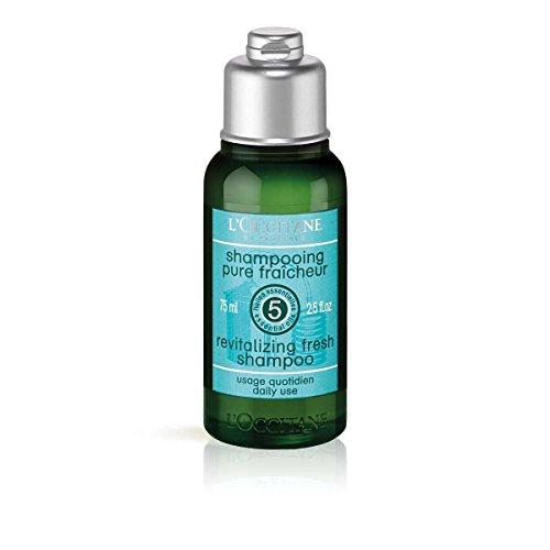 AROMACHOLOGIE Revitalisierende Frische Shampoo - 75 ml - L'OCCITANE (Provence Loccitane Shampoo En)