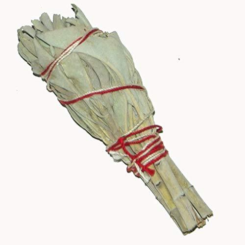 Native Spirit: Weißer Salbei Räucherbündel 2X Baby-Version, ca 8 cm, 20-25 g (3-4 Inch Baby-Smudge-Stick White Sage) -