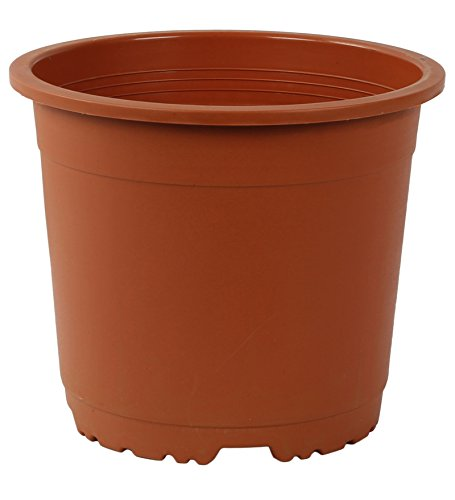 Cappl 9 Inch Round Pot (Pack Of 12) Teracotta / Brown