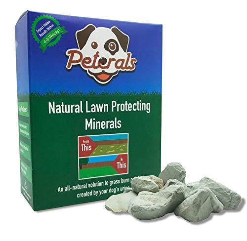 Peterals 600 Gramm - Vollkommen Natürliche Mineralsteine, um Grasverbrennungen durch Hundeurin zu verhindern