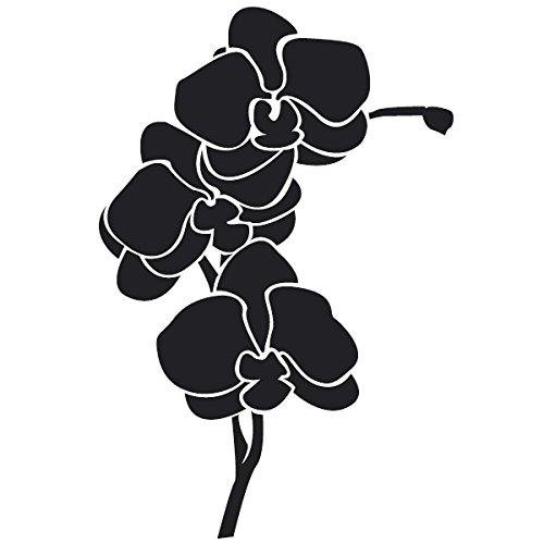 Wadeco Orchidee Wandtattoo Wandsticker Wandaufkleber 35 Farben verschiedene Größen, 40cm x 32cm, (Rasen Ideen Dekorationen)