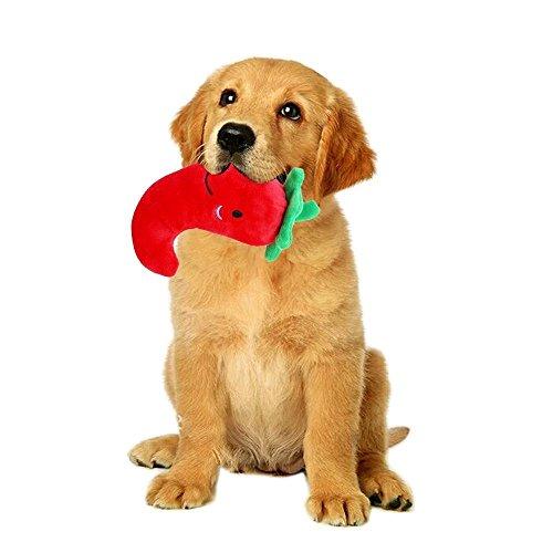 Sotoboo Squeek Musik Plüsch Hund Spielzeug Haustier Spielzeug Obst Gemüse Glitschige Squeaker Spielzeug für Hund Katze Welpen Kätzchen Kauen Spielzeug 5x Ein Pack (Release Seil Ball)