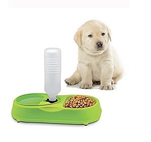 2 en 1 Distributeur Automatique d'Eaux et Gamelle pour Nourritures Croquettes Pour Petits ou Moyens Chiens Chiots Chats Vert