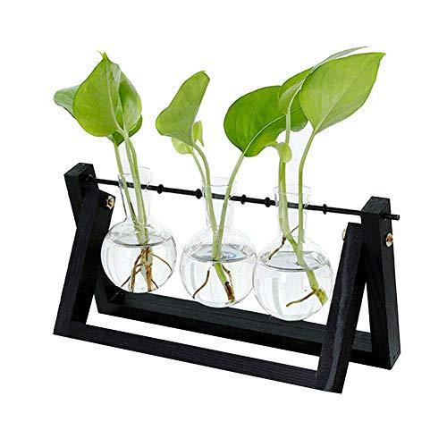 Klar Glas-schreibtisch (Gakoz Hydroponischen Glas Pflanzgefäß Birnen Vase mit Hölzern Ständer Tablett Tischplatte Schreibtisch Dekor - Schwarz, Three Vase)