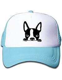 317e2e70a6da4 Nifdhkw Boston Terrier Bulldog francés Boy Sombrero de Malla Unisex1