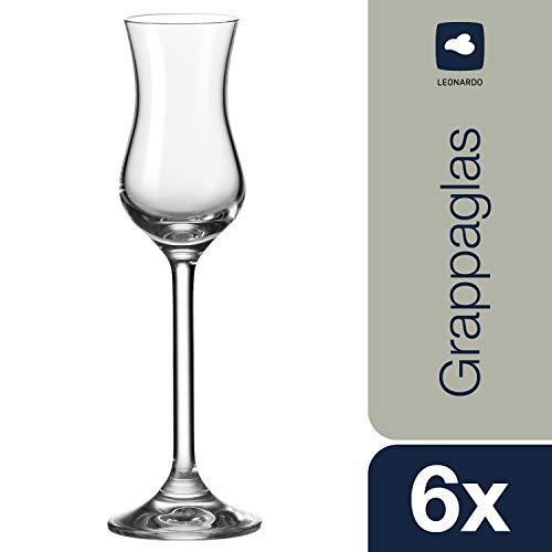 Leonardo Grappa-Glas Daily, robuste Schnaps-Gläser für Grappa geeignet, Gläser-Set mit 100-ml Nutzinhalt, 6-teilig, 063319