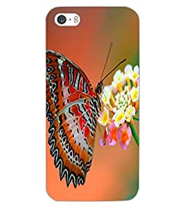 APPLE IPHONE 5S BUTTERFLY Back Cover by PRINTSWAG
