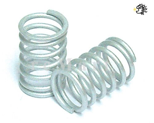 AST Works Kyosho Rear Spring (4.8-2.0) 1:10 RC Cars On Road #FMW15-4820