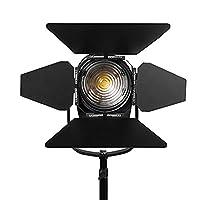 ikan WS-F100 100 W 4-Inch White Star Fresnel Light - Black
