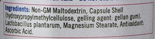 Quest L Plantarum – 90 Capsules