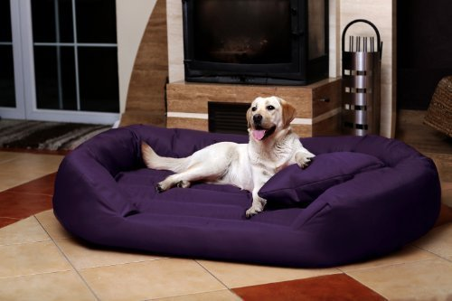 Petitude Reversable Dual(Purple) color Ultra Soft Ethenic Designer Velvet Bed For Dog & Cat(Export Quality)-XL