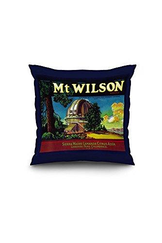 Mt. Wilson Orange Label (20x20 Spun Polyester Pillow Case, White Border)