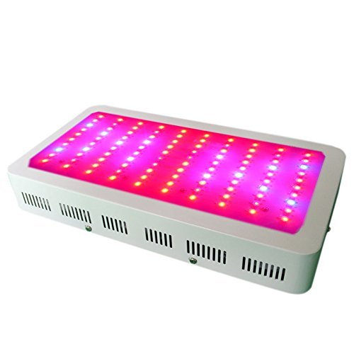 300-watt-elevent-la-lumiere-avec-super-harvest-couleurs-led-81-edition-6-band