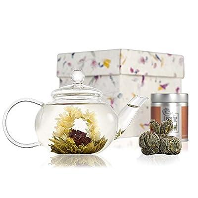 Coffret découverte fleur de thé avec théière Classic en verre soufflé