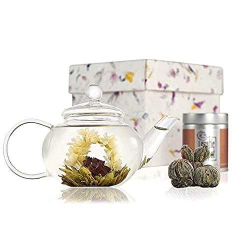 Classic Flowering Tea Gift Set - Glass Teapot with Infuser - 600ml (2 Cup Size) - Sampler Tin of Blooming Tea - Glass Tea Set in Handmade Gift Box