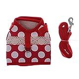 Chenguld Basic Hundegeschirr Weste Breathable Nylon Harness Haustier Blei Leine Clip Set für Hunde Welpen Kätzchen Outdoor-Training oder Walking