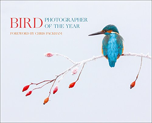 Bird Photographer of the Year: Collection 2 (Photography) por Bird Photographer of the Year