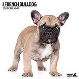 Calendario 2020, motivo: Bulldog francese