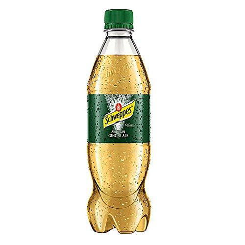 Schweppes Ginger Ale 24 x 0,5l Flasche inkl. 6€ EINWEG Pfand