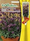 Lavendel Echter (Portion inkl. Stecketikett)