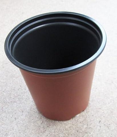 Nutley's Modiform Lot de 100 pots à