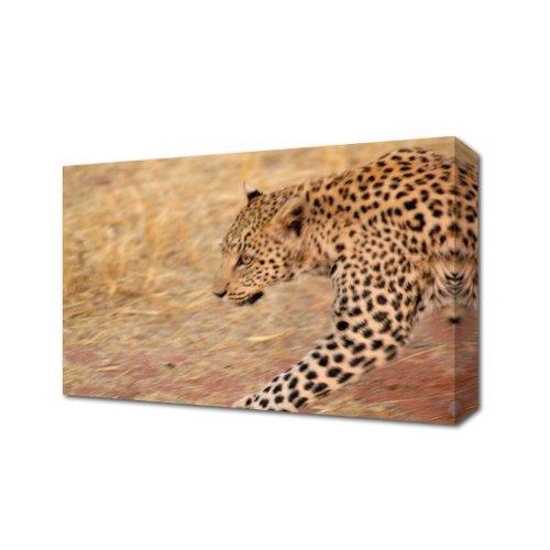 LEOPARD CANVAS ART PRINT BOX CANVAS READY TO HANG ANIMAL 48 inch x 30 inch B/W