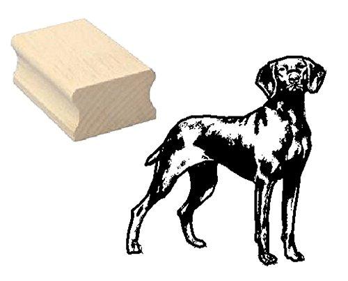 Timbro timbro in legno, motivo: timbro « vizslav » Scrapbooking-Embossing kinderstempel animale cane bracco ungherese Vizsla Cane Caccia cane animale domestico