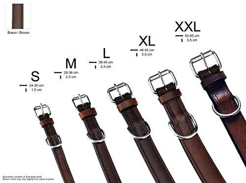 Schnüffelfreunde Hundehalsband aus Leder (M – 28-36cm, Braun) - 6