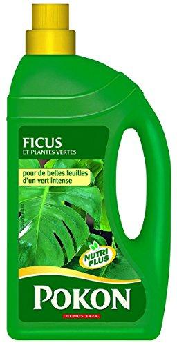 scotts-engrais-pour-plante-verte-et-ficus-pgppgk-vert-13-x-63-x-247-cm-1-l-fr2969