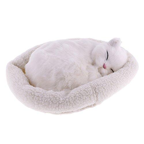 Homyl Süße Plüschtier schlafende Tiere Kuscheltier Plüschfigur Spielzeug Auto Haus Tisch Dekoration - Perserkatze (Autos Tischdekoration)