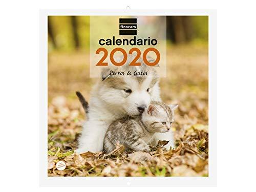Finocam Calendrier mural 2020 Images 30 x 30 Chiens et chats espagnol