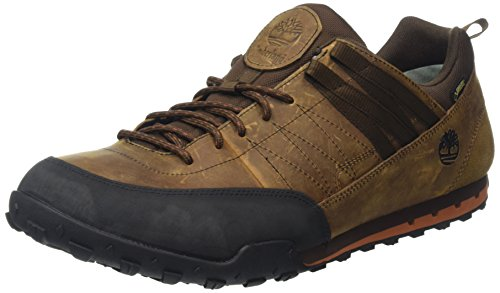 Timberland Greeley Approach Low, Sneaker, Uomo, Brown, 43