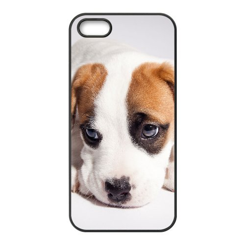 LP-LG Phone Case Of Pit Bull Terrier For iPhone 5,5S [Pattern-6] Pattern-1