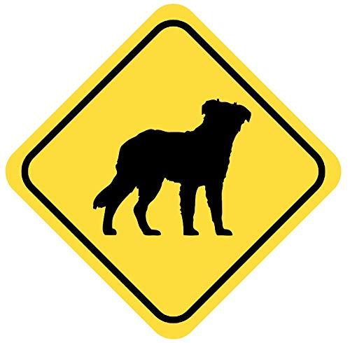 Samunshi® Australian Shepherd Warnschild Warndreieck Aufkleber Achtung Vorsicht Hund in 8 Größen (8x8cm Mehrfarbig) -