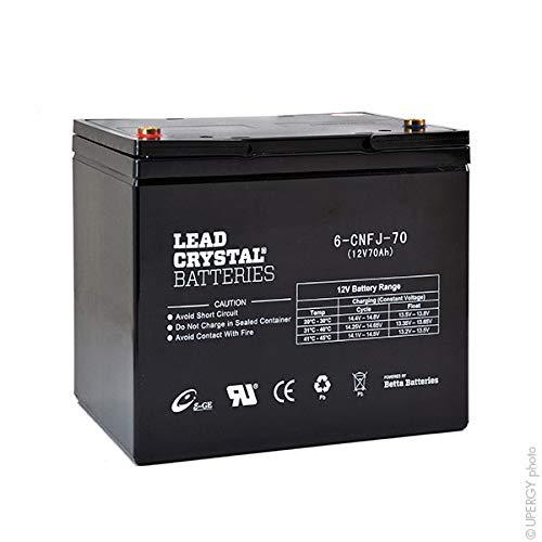 Lead Crystal - Akku Bleikristall 6-CNFJ-70 12V 70Ah M6-F -