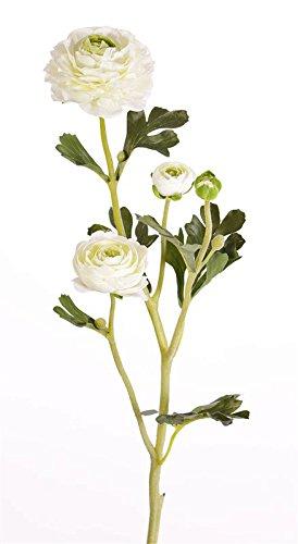 artplants Kunst Ranunkel Noemie mit 3 Blüten, Creme, 65 cm, Ø 4-8 cm – Künstliche Blume/Plastik Blume