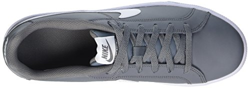 Nike Court Royale, Chaussures de Tennis Homme Gris / Blanco (Cool Grey / White)