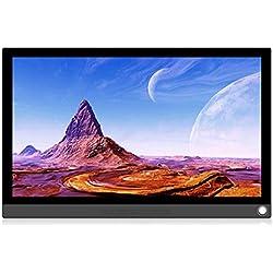LouiseEvel215 Moniteur Portable Moniteur d'affichage de Type C pour écran Tactile HDMI 1080P pour PS4 / Xbox/Switch/PC/Android