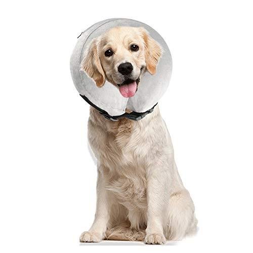 PET SPPTIES Salud Hinchable Mascota Perro Collares