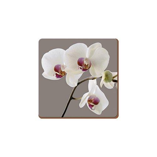 creative-tops-orchid-harmony-set-of-6-premium-coasters