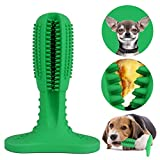 Dog Toothbrushes Review and Comparison