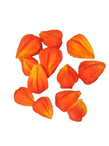 Kunstblüten Physalis Serda Orange 12 Stück je 3 Größen