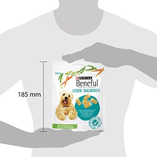 Beneful Leckere Snackbürste Hundesnack, Milch und Calcium, 6er Pack (6 x 130 g) - 5