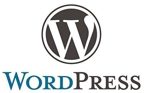 Ihr eigener Wordpress-Blog mit eigener Wunschdomain und 10 GB Webspace fertig installiert. Deutscher Server mit Plesk, komplett in Deutsch.