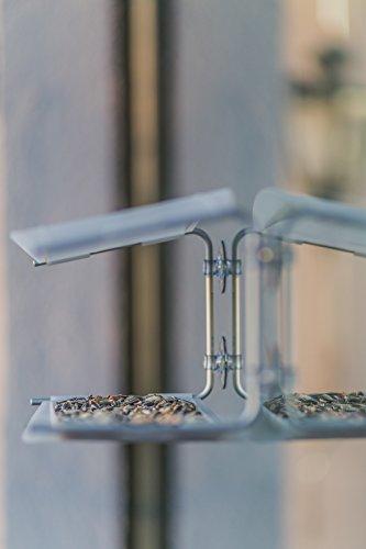 Radius 395 C Vogelhaus Piep Show Transparent - 11